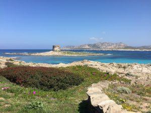 Playa la Pelosa Cerdeña