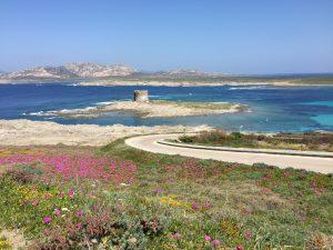 Parque Nacional playa la pelosa