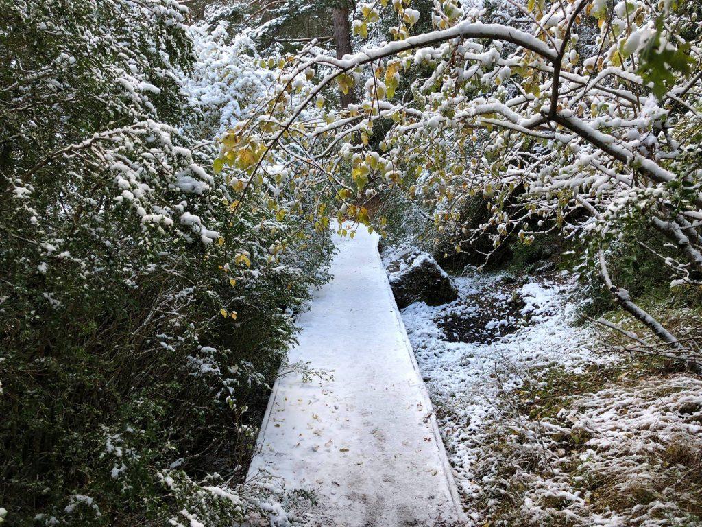 caminos río cuervo nevados