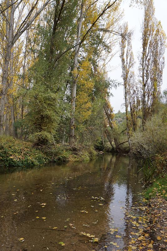 El Parque Natural de las Hoces del Río Duratón